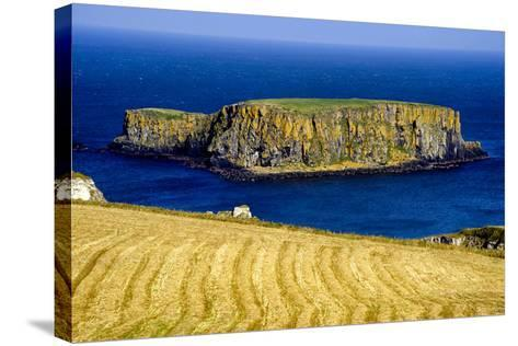 Sheep Island Near Carrick a Rede on the North Coast of Northern Ireland-Chris Hill-Stretched Canvas Print