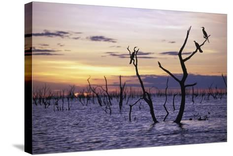 View of Lake Kariba at Sunset-Design Pics Inc-Stretched Canvas Print