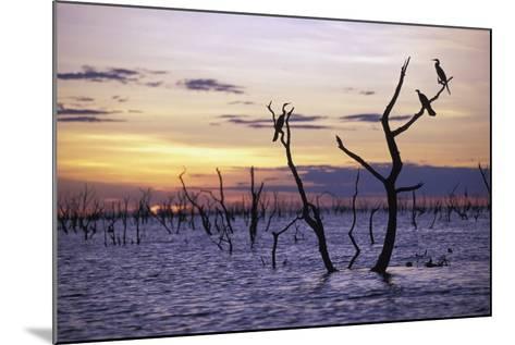 View of Lake Kariba at Sunset-Design Pics Inc-Mounted Photographic Print