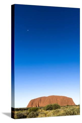 An Enormous Clear Blue Sky Rises Above the Desert Plain and Uluru-Jason Edwards-Stretched Canvas Print