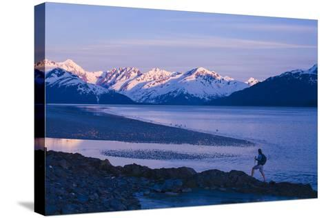 Hiker at Dusk on Ridge Overlooking Turnagain Arm with Sun Setting on Chugach Mountains-Design Pics Inc-Stretched Canvas Print