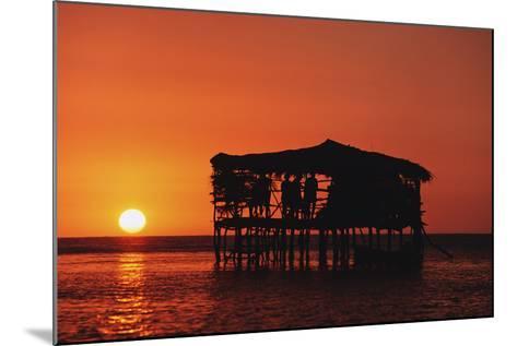 Pelican Bar at Sunset-Design Pics Inc-Mounted Photographic Print