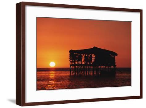 Pelican Bar at Sunset-Design Pics Inc-Framed Art Print