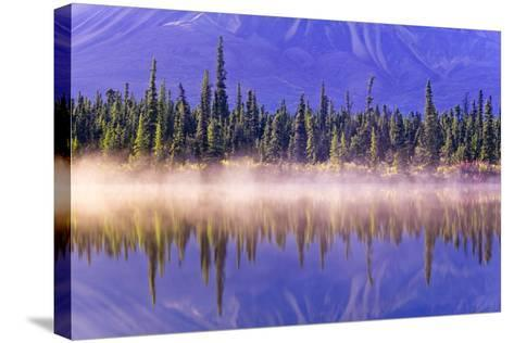 Forest Reflects-Design Pics Inc-Stretched Canvas Print