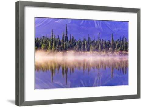 Forest Reflects-Design Pics Inc-Framed Art Print