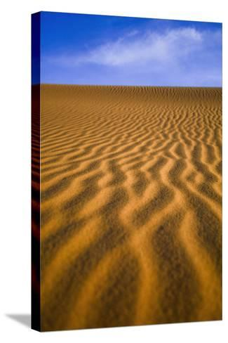 Desert-Design Pics Inc-Stretched Canvas Print