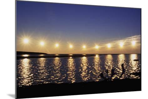 Multiple Exposure of Arctic Midnight Sun Moving across Horizon over Arctic Coast Anwr W-Design Pics Inc-Mounted Photographic Print