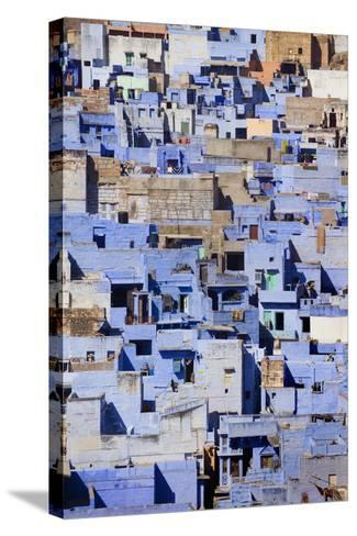 Blue Buildings of Jodhpur, Aerial View-Design Pics Inc-Stretched Canvas Print