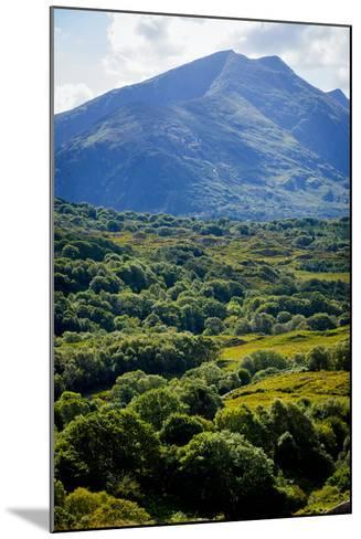 Looking over to Cana Mountains, Beara, County Kerry-Chris Hill-Mounted Photographic Print