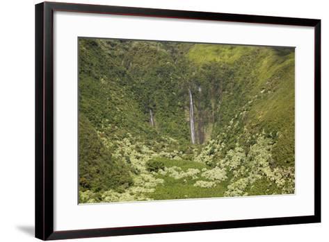 Hawaii, Maui, Waimoku Falls and Lush Greenery-Design Pics Inc-Framed Art Print