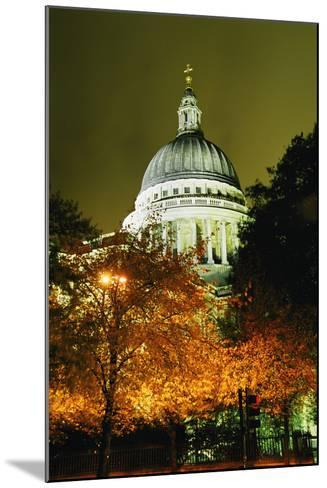 St Paul's Cathedral at Night with Trees-Design Pics Inc-Mounted Photographic Print