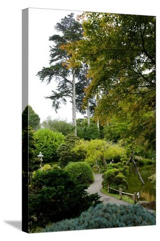 Curving Paths in the Japanese Tea Garden, the Oldest Public U.S. Japanese Garden-Krista Rossow-Stretched Canvas Print