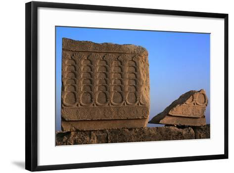 A Relief Depicting Iris Flowers and their Underground Rhizomes and their Connection-Babak Tafreshi-Framed Art Print