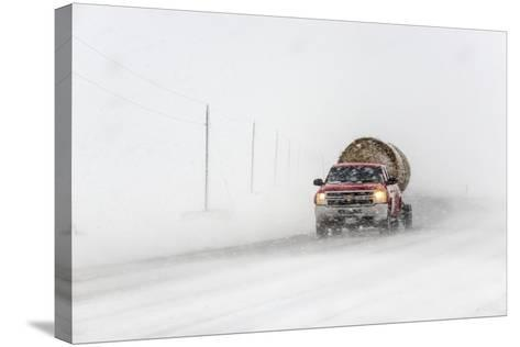 A Pickup Truck Pulling Hay Bales Drives Through Blizzard Conditions-Jim Reed-Stretched Canvas Print