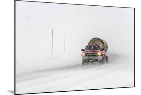 A Pickup Truck Pulling Hay Bales Drives Through Blizzard Conditions-Jim Reed-Mounted Photographic Print
