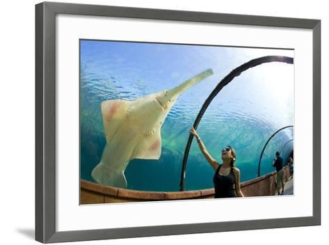 A Woman Points to a Carpenter Shark, or Sawfish, Swimming over an Underwater Tunnel-Mike Theiss-Framed Art Print