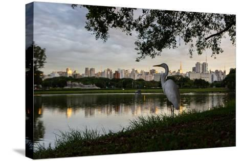 A Great Egret Looks Out over a Lake in Sao Paulo's Ibirapuera Park-Alex Saberi-Stretched Canvas Print