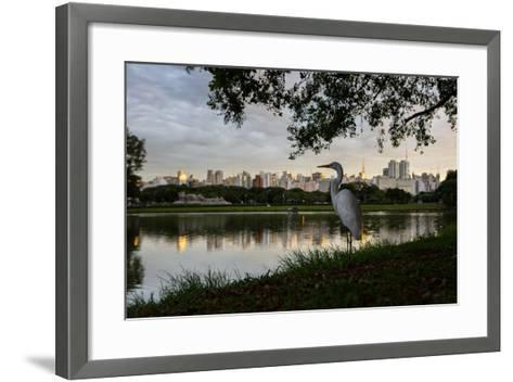 A Great Egret Looks Out over a Lake in Sao Paulo's Ibirapuera Park-Alex Saberi-Framed Art Print