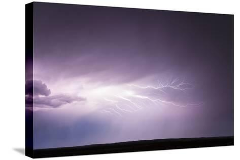 Cloud-To-Cloud Lightning Wriggles across the Sky-Jim Reed-Stretched Canvas Print