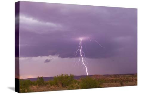 Intense Purple Lightning Bolts Strike in the Desert of New Mexico-Mike Theiss-Stretched Canvas Print