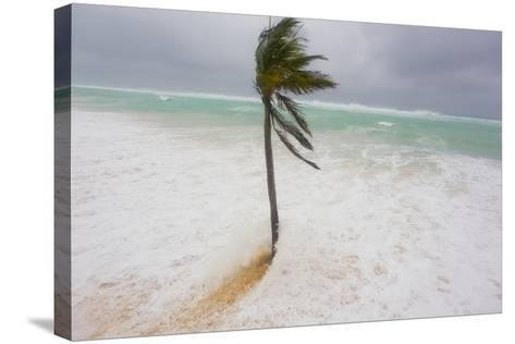 Large Waves and Storm Surge Cover Beaches as Hurricane Igor Approaches-Mike Theiss-Stretched Canvas Print