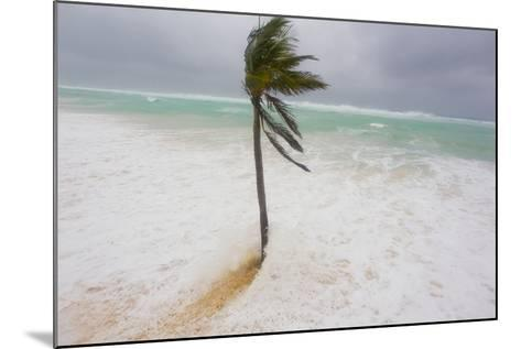 Large Waves and Storm Surge Cover Beaches as Hurricane Igor Approaches-Mike Theiss-Mounted Photographic Print