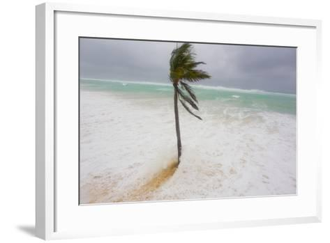 Large Waves and Storm Surge Cover Beaches as Hurricane Igor Approaches-Mike Theiss-Framed Art Print