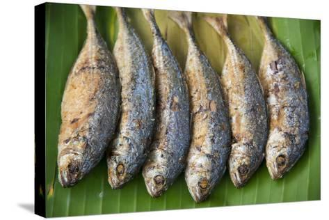 Fish for Sale in a Street Market-Michael Melford-Stretched Canvas Print