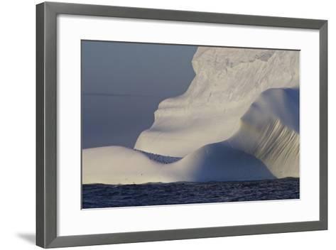Distant Penguins on an Iceberg-Jim Richardson-Framed Art Print