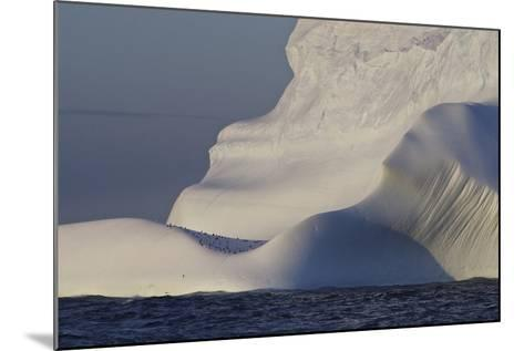 Distant Penguins on an Iceberg-Jim Richardson-Mounted Photographic Print