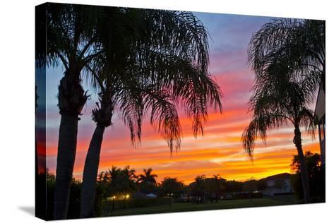 Silhouetted Palm Trees and a Colorful Sky over Coastal Homes at Sunset-Mike Theiss-Stretched Canvas Print