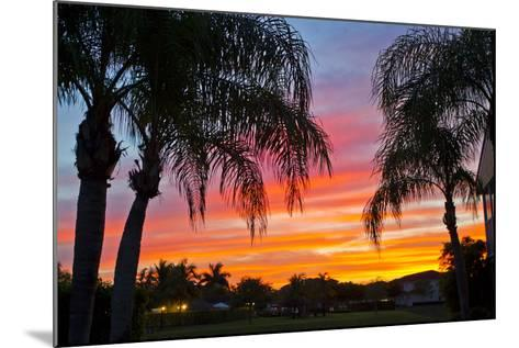 Silhouetted Palm Trees and a Colorful Sky over Coastal Homes at Sunset-Mike Theiss-Mounted Photographic Print