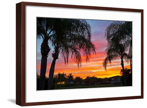 Silhouetted Palm Trees and a Colorful Sky over Coastal Homes at Sunset-Mike Theiss-Framed Art Print