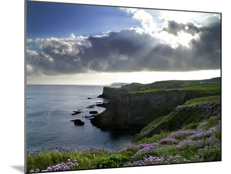 Sunlight Streams Through Clouds onto Sea Pinks at Dunluce Castle on Northern Ireland's North Coast-Chris Hill-Mounted Photographic Print