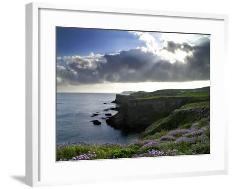 Sunlight Streams Through Clouds onto Sea Pinks at Dunluce Castle on Northern Ireland's North Coast-Chris Hill-Framed Art Print