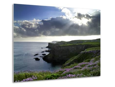 Sunlight Streams Through Clouds onto Sea Pinks at Dunluce Castle on Northern Ireland's North Coast-Chris Hill-Metal Print
