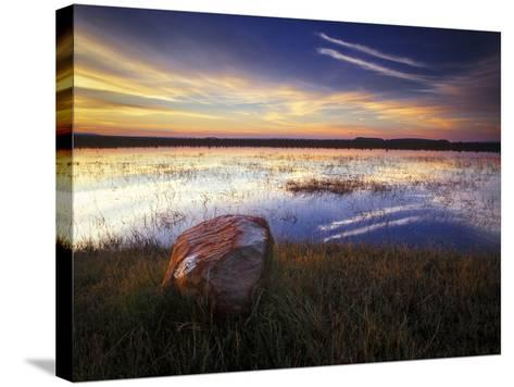 Pond with Rock at Sunrise, Cederberg Wilderness Area, South Africa-Keith Ladzinski-Stretched Canvas Print