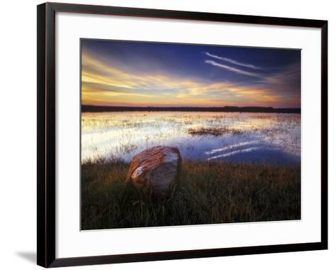 Pond with Rock at Sunrise, Cederberg Wilderness Area, South Africa-Keith Ladzinski-Framed Art Print