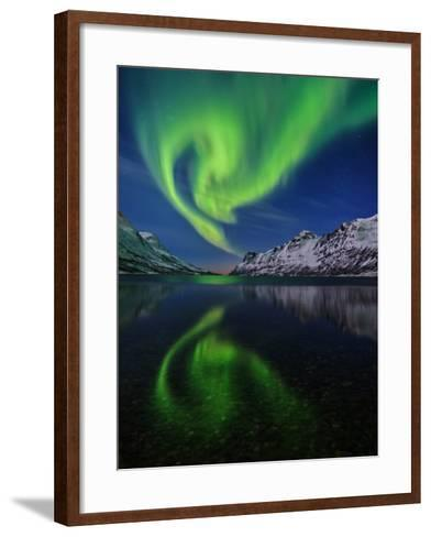 View of the Aurora Borealis, Northern Lights, Reflected in a Fjord-Babak Tafreshi-Framed Art Print