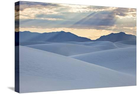 White Dunes with Late Afternoon Sunlight in White Sands National Monument-Derek Von Briesen-Stretched Canvas Print