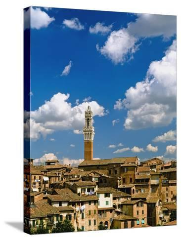 Torre De Mangia and Siena Skyline-Design Pics Inc-Stretched Canvas Print