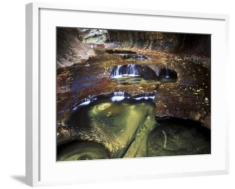 View of the Creek at Subway, Zion National Park, Utah-Keith Ladzinski-Framed Art Print