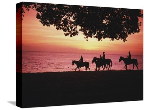 Riding Horses on the Beach at Sunset-Design Pics Inc-Stretched Canvas Print