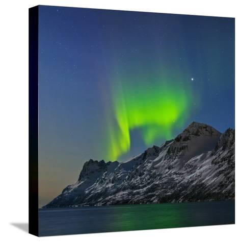 View of the Aurora Borealis, Northern Lights, Reflected in a Fjord-Babak Tafreshi-Stretched Canvas Print