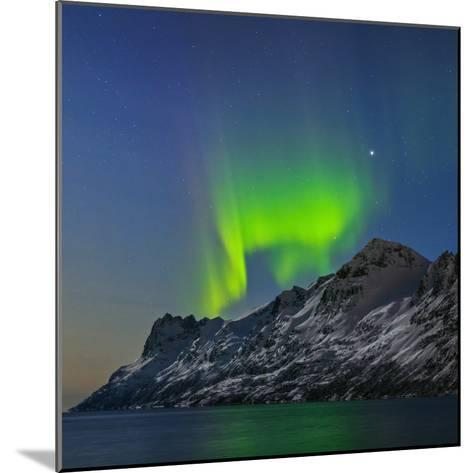 View of the Aurora Borealis, Northern Lights, Reflected in a Fjord-Babak Tafreshi-Mounted Photographic Print