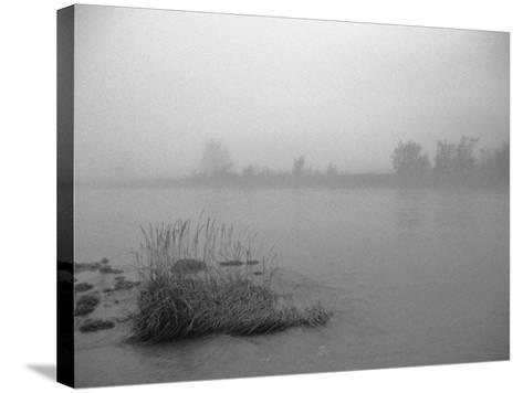 Fog over Taiya River Near Dyea Alaska Se Summer Bandw-Design Pics Inc-Stretched Canvas Print