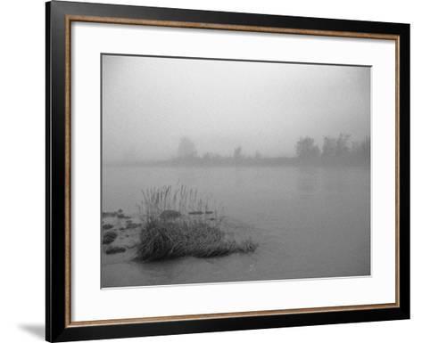 Fog over Taiya River Near Dyea Alaska Se Summer Bandw-Design Pics Inc-Framed Art Print