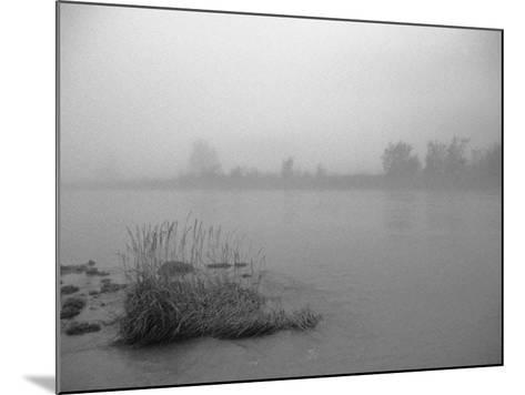 Fog over Taiya River Near Dyea Alaska Se Summer Bandw-Design Pics Inc-Mounted Photographic Print