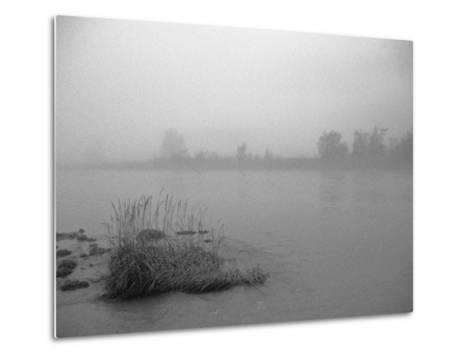 Fog over Taiya River Near Dyea Alaska Se Summer Bandw-Design Pics Inc-Metal Print