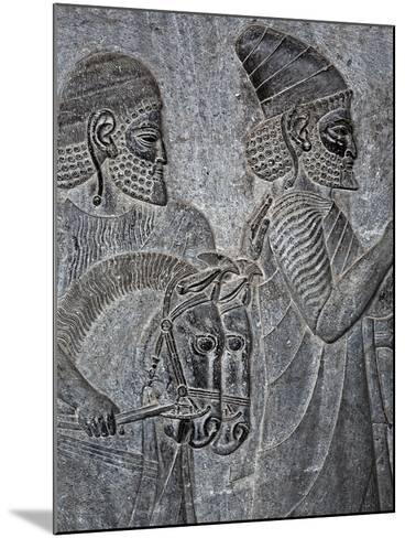Bas-Reliefs on the Great Staircase of Apadana Palace, Persepolis-Babak Tafreshi-Mounted Photographic Print